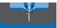 Lititgation Loans Mobile Logo
